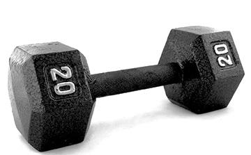 twenty-pound-dumbbell-weight